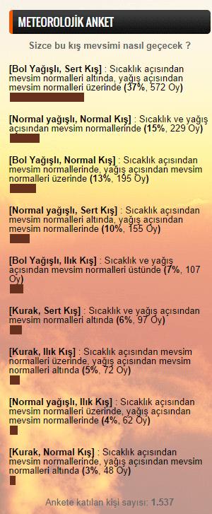 Anket Sonuc