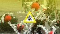 Tarımcılar 18-23 Mart Arasına Dikkat !
