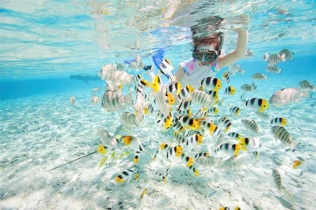 snorkeling-los-roques-1