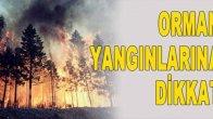 Orman Yangını Riski