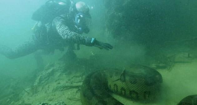 Nehir canavarları
