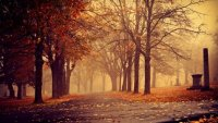 Güçlü El-NÄ°no ve Fırtınası Bol Sonbahar…