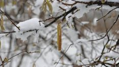 Mart ayında kar geliyor !