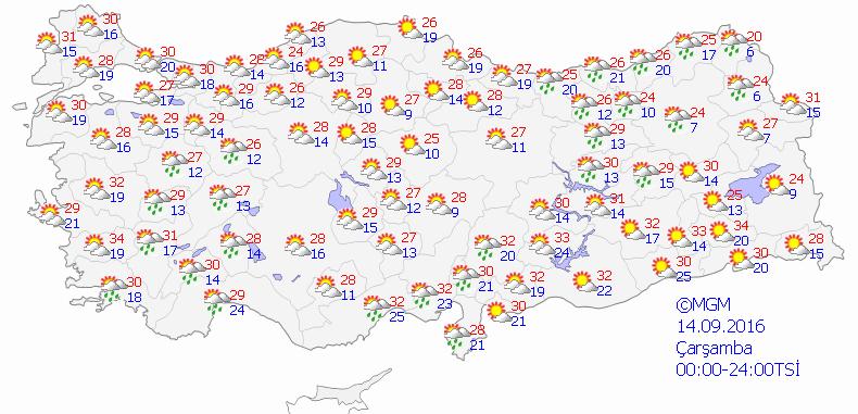 haritatahmingun3