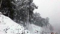 Alanya'da Kar Yağışı Ulaşımı Etkiledi!