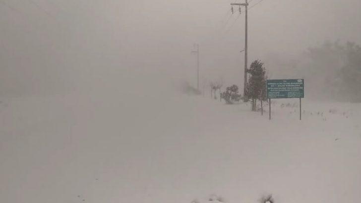 Karadeniz'de Unutulmaz Kar! (29-31 Ocak 2017 Efsanesi)