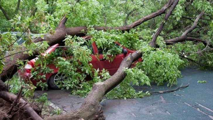 Moskova'da Fırtına: 13 Ölü !