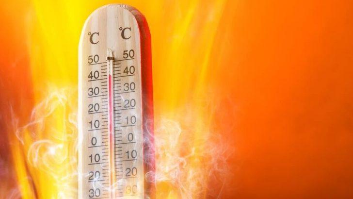 İstanbul'da Sıcaklık 50 Derece Hissedilecek!