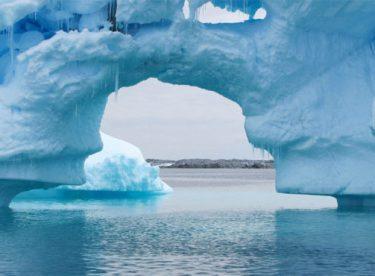 Antartika'da 100 yıllık kek bulundu tazelerinden daha taze çıktı
