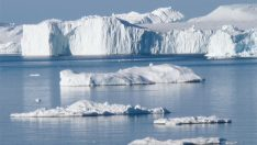 Bilim adamları Grönland'dan endişeli