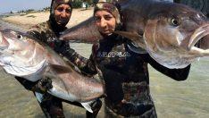 Çanakkale'de zıpkınla yakaladı boyu 2 metre ağırlığı 68 kg