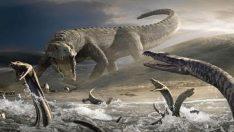 Dünyaya gelen ilk hayvanların sırrı sonunda çözüldü