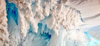 Antarktika'nın mağaralarında yeni canlılar
