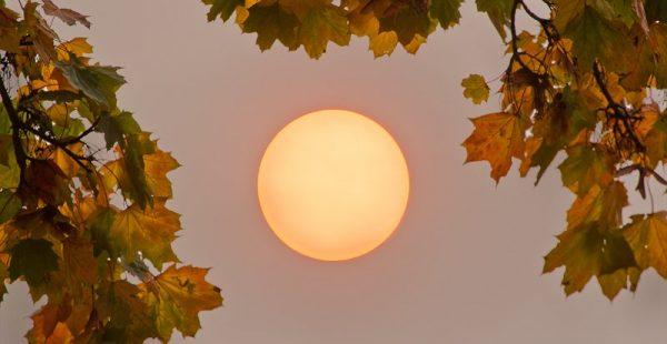 İngiltere'de turuncu hava…