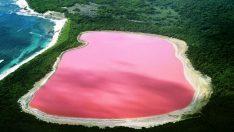 Pembe Renkteki Hillier Gölü