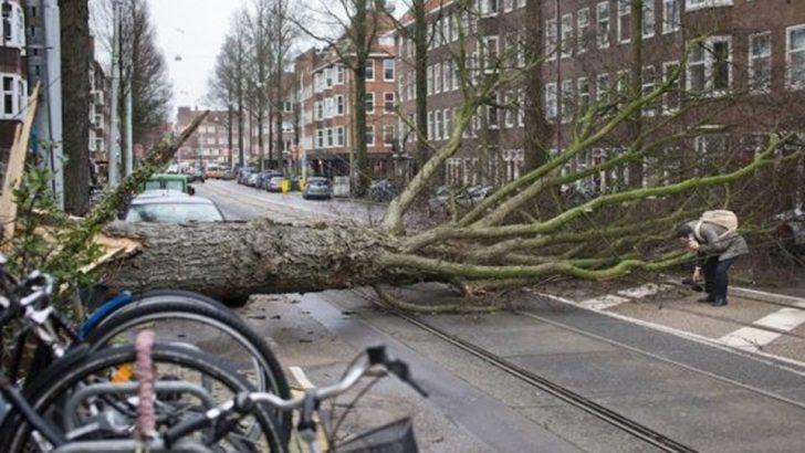 Hollanda'da fırtına insanları uçurdu!