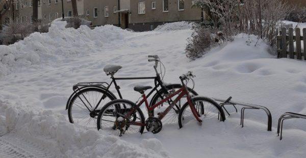 Polonya'da soğuk hava 53 can aldı!