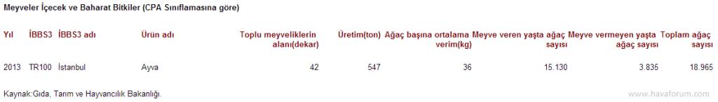 """2013-1024x146 """"Ayva bolsa kış sert geçer"""" istatistikleri Haberler"""