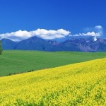 Hava Tahmini ve Hava Durumu Sayfamız…