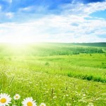 23-24 Marta kadar kış, sonra ilkbahar…
