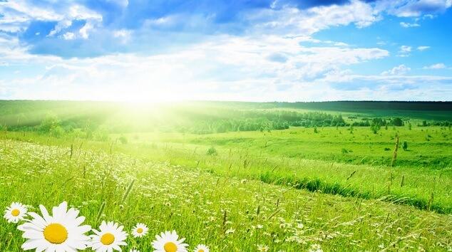 ilkbahar 23-24 Marta kadar kış, sonra ilkbahar... Genel Haberler