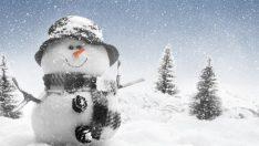 Kar Yağışının Faydaları…