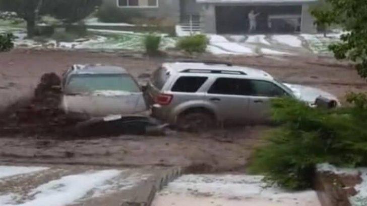 ABD'de Aşırı Yağmur Sele Neden Oldu…