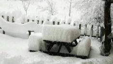 Ocak ikinci yarısı soğuk ve karlı geçebilir !
