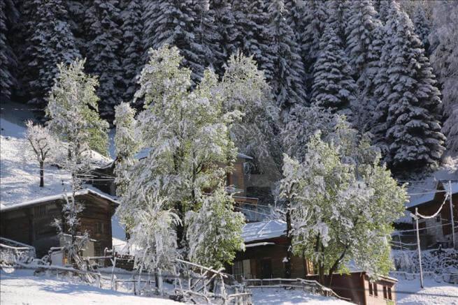 Ayder Yaylası'na kar yağdı !