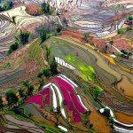 kusbakisi-dunyanin-en-guzel-sehirleri-20-150x150 Kuşbakışı Dünyanın En Güzel Şehirleri Genel Haberler