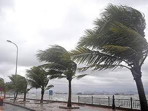 imbat-ruzgari-nedir İmbat Rüzgarı Nedir? Sözlük