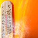 Dünya'da yeni sıcaklık rekorları kırılmaya devam ediyor…