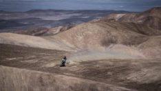 Dünyanın en kurak çölü Atacama çiçek açtı
