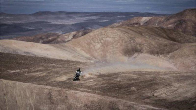 dunyanin-en-kurak-colu-atacama-cicek-acti Dünyanın en kurak çölü Atacama çiçek açtı Haberler