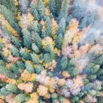 boludan-sonbahar-ve-kis-manzaralari-10-150x150 Bolu'dan sonbahar ve kış manzaraları Haberler