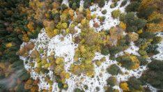 Bolu'dan sonbahar ve kış manzaraları