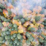 boludan-sonbahar-ve-kis-manzaralari-4-150x150 Bolu'dan sonbahar ve kış manzaraları Haberler