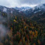 boludan-sonbahar-ve-kis-manzaralari-9-150x150 Bolu'dan sonbahar ve kış manzaraları Haberler