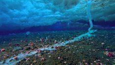 Ölümcül Su Altı Buz Saçağı