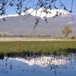 sultansazligi-kus-cennetindeki-kurakliktan-su-takviyesi-yapildi-2-150x150 Sultansazlığı Kuş Cenneti'ndeki kuraklıktan su takviyesi yapıldı! Haberler