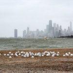 sert-kis-abdde-michigan-golunu-canlandirdi-6-150x150 Sert kış ABD'de Michigan Gölü'nü canlandırdı Haberler