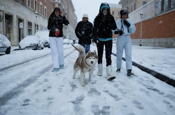 4 Roma'da 6 yıl sonra ilk kez kar yağdı! Haberler