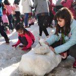 antalyada-kar-senligi-6-150x150 Antalya'da kar şenliği Haberler