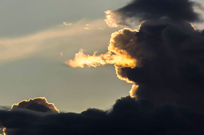 Doğal oluşmuş hayvan görünümlü bulutlar…