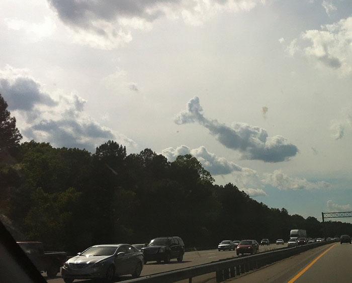 14-1 Doğal oluşmuş hayvan görünümlü bulutlar... Video Galerisi