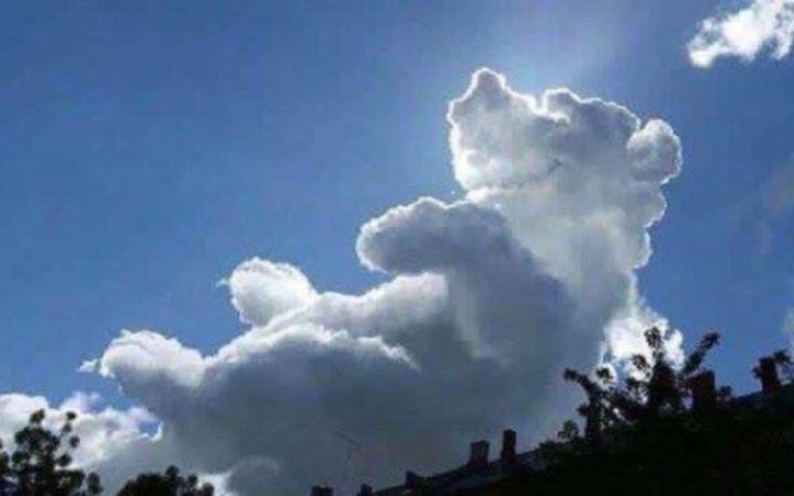 hayvan-gorunumlu-bulutlar-dogal-6 Doğal oluşmuş hayvan görünümlü bulutlar... Video Galerisi