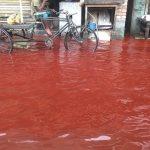 Kan Yağmuru Nedir?