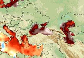 Karadeniz'de Deniz Suyu Sıcaklığı Dikkat Çekiyor!