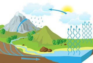 Su Döngüsü Nedir?