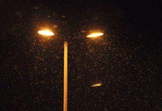 bayburt-kar-surprizi-320x220 Bayburt'ta Kar Yağışı Şaşırttı! Genel Haberler